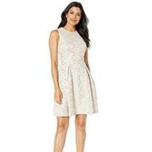 New 14 Vince Camuto Fused Lace Fit and Flare Dress